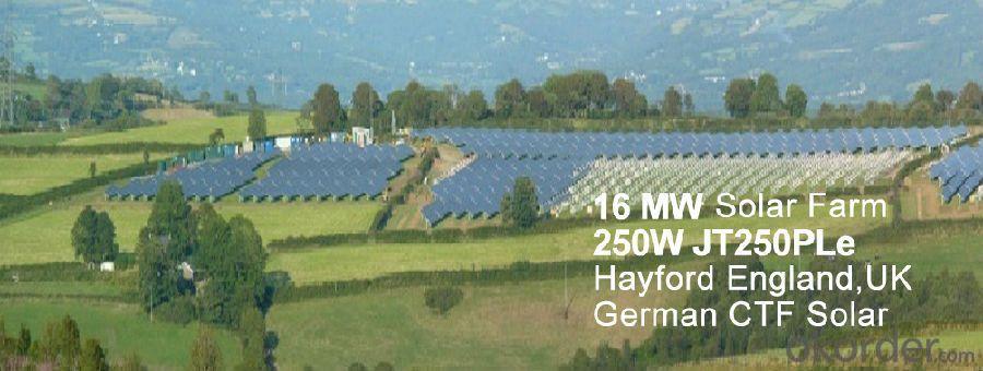 Polycrystalline Silicon Solar Panel 250W / Solar Module
