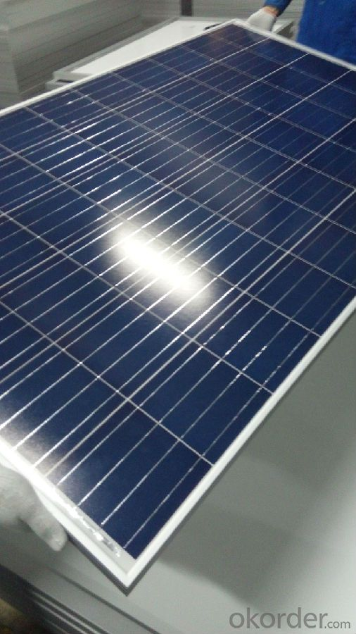Poly 280w Solar Panels from CNBM with High Efficiency