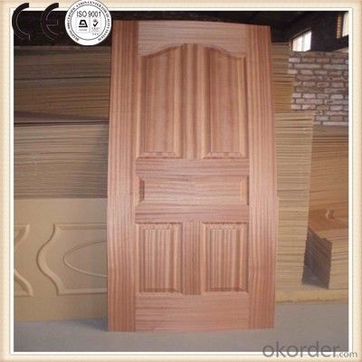 Hydraulic Wood  Door Skin Moulding Hot Press