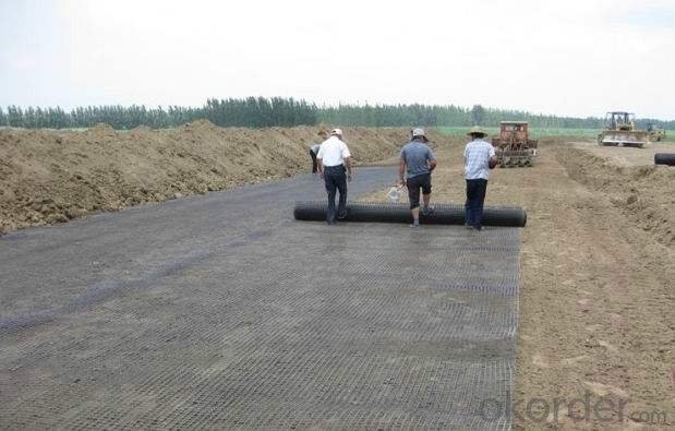 Steel Geogrid PP Baixial Geogrid Good Quality for Highway