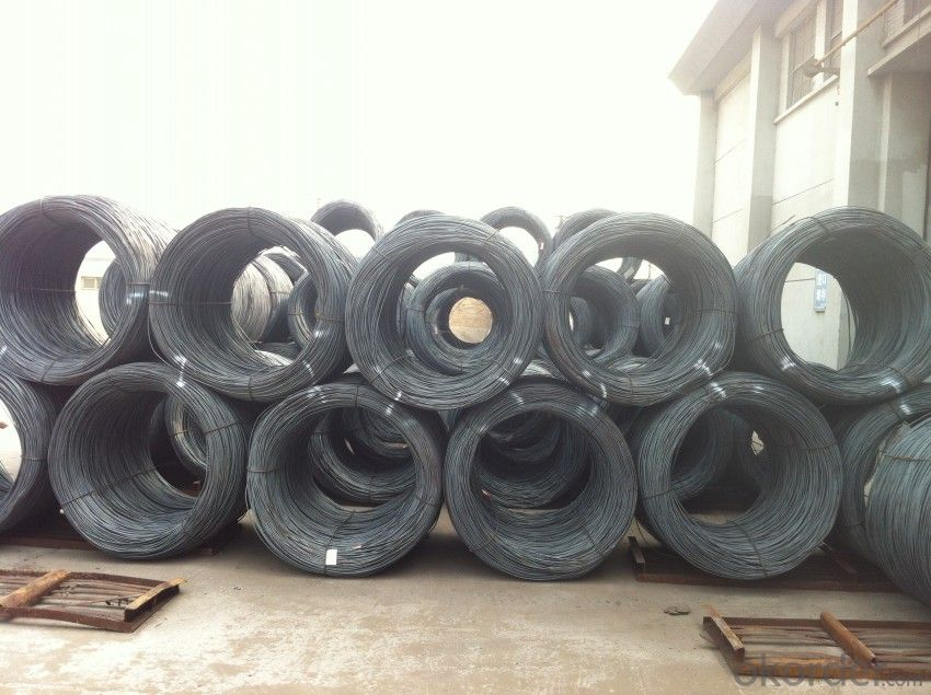 Steel Wire Rods in Grade ASTM SAE1006-1018