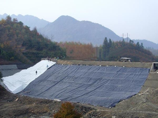 PE/EVA/ECB Geomembrane with Different Colors, Best Made in Chin, Water Proof Expert