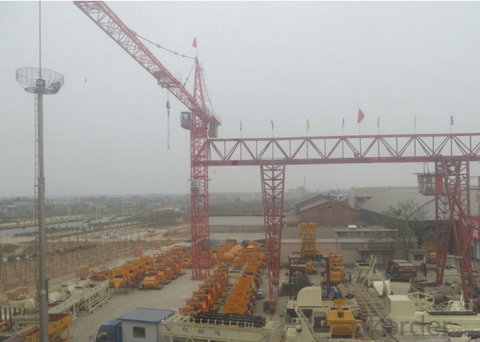 Tower Crane for Sale,Tower Crane Price manufacturer factory price QTZ80(5010)