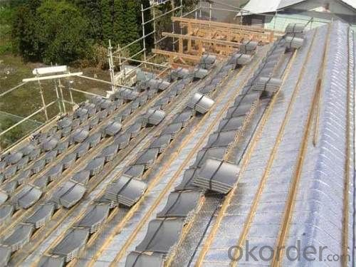 Reinforced Waterproofing and Vapor Barrier Membrane