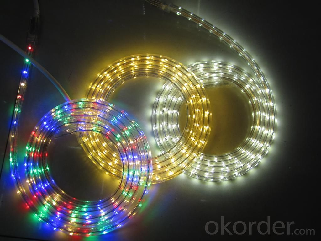 29V 240Leds/Meter 3014 Led Strip Lights