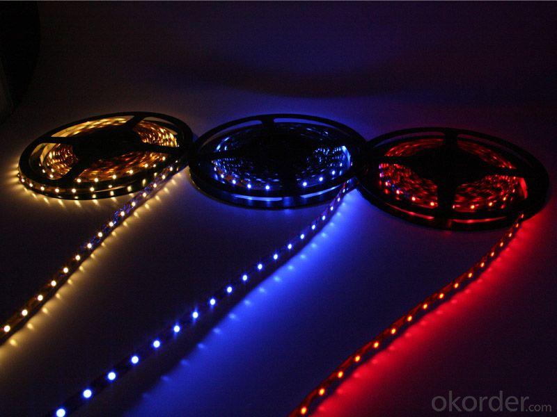 30V 240LEDS/Meter 3014 Led Strip Lights