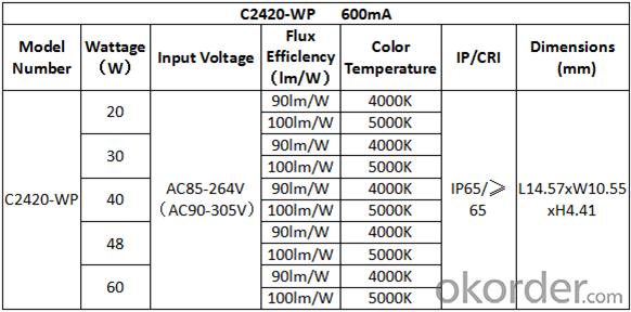 LED land scape light /LED light / LED wall pack light / LED wall lamp/C2420-BW