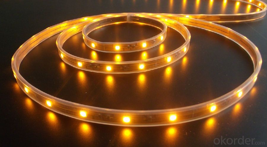 988V 240LEDS/Meter 3014 Led Strip Lights