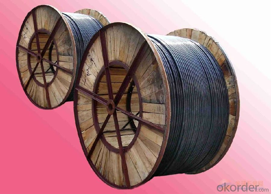 XLPE Insulated Steel Wire Armored Multi-core