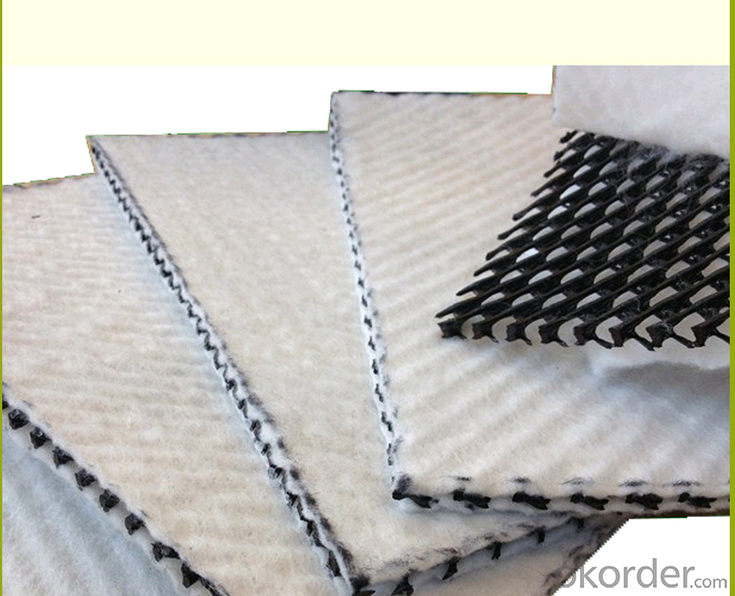 Tri-dimension Compound Geonet /plastic drainage matting