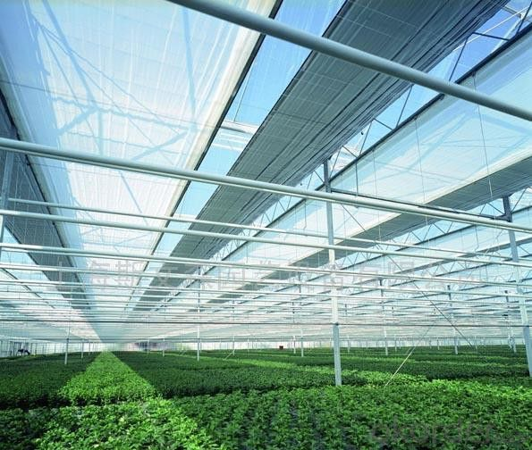 Shade Netting/Shade Net/Greenhouse Shade Netting Factory in China