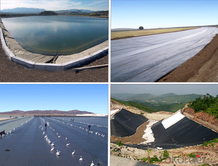 Hdpe Dimple Geomembrane/Drainage Board Used for Basement Drainage