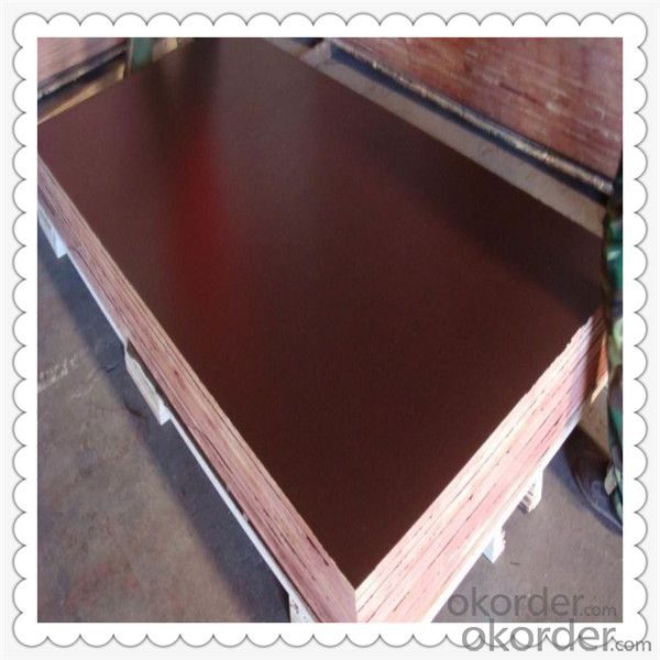 Commercial Plywood with High Quality 1220*2440*18mm Thickness