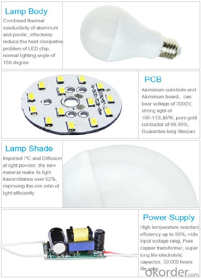 LED Bulb Light(150° Beam Angel)