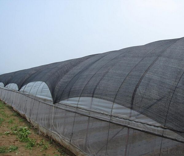 PE Garden Shade Net 95% Shading Factors Net