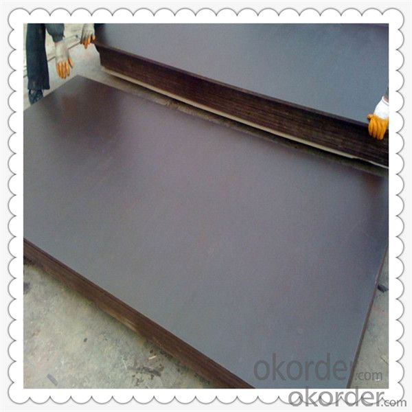 Brown Color Film Faced Plywood with Poplar Material