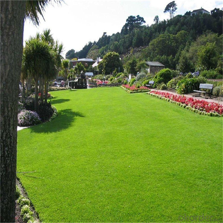 0mm Soccer Green Or White Artificial Grass Decoration Turf