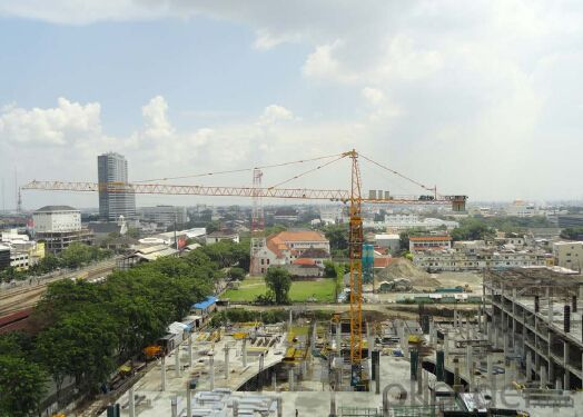 Model:D800-42 Tower Crane with Multiple Operation Modes and Wide Application