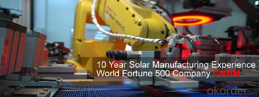 Monocrystalline 250W and 300W High Quality