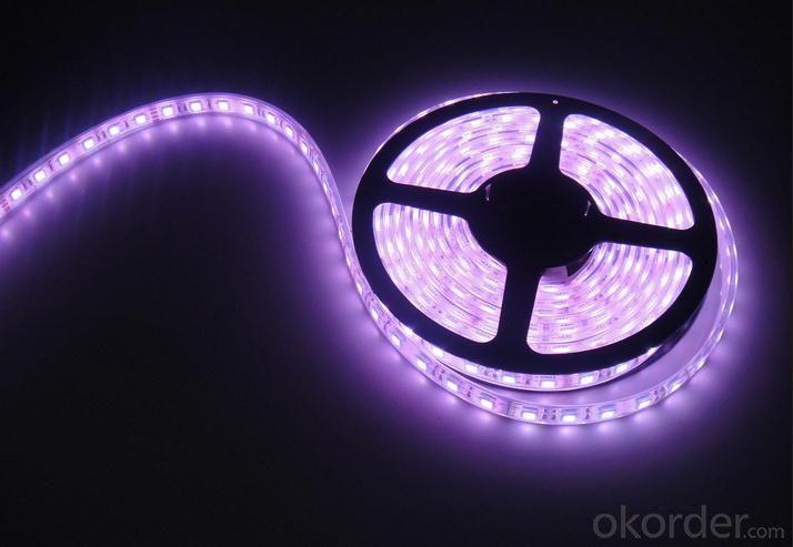 Dream Color Waterproof IP65 30led/m SMD5050 Flex LED Strip