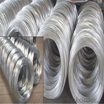 Galvanized Iron Wire/Galvanized Binding Wire Hot Dipped and Electro Galvanized