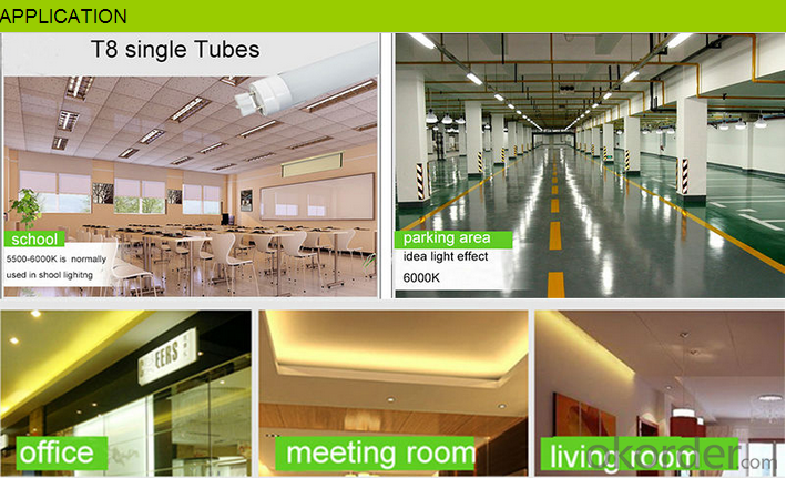 T5 T8 LED Tube Light Best Price 3 W To 35W