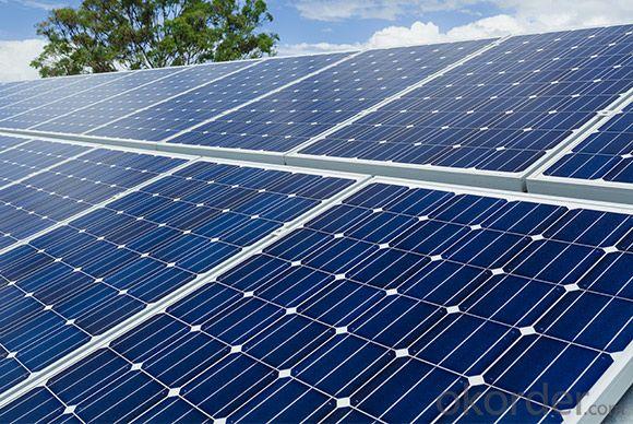 Monocrystalline Silicon  265w Solar Module in EU Market