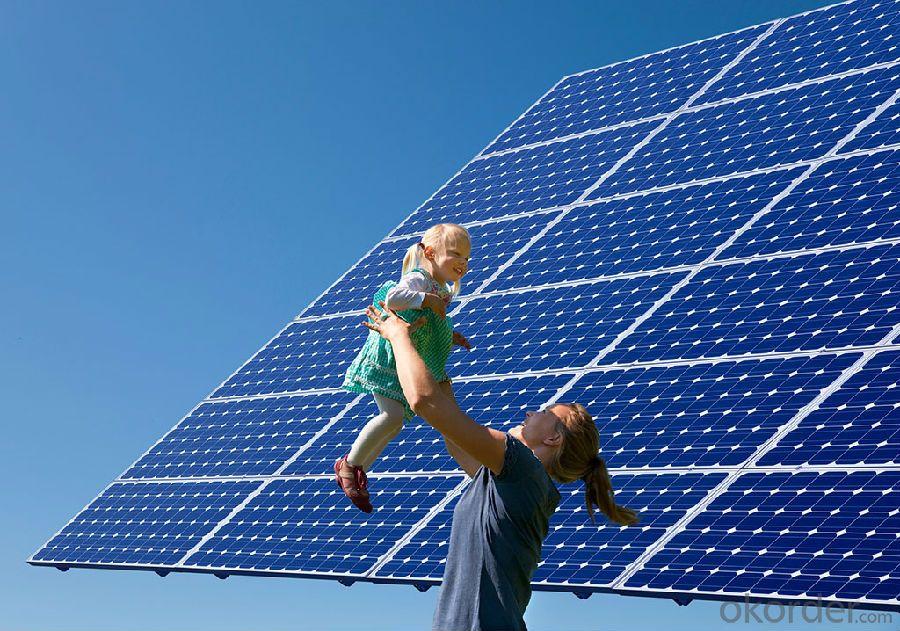 Monocrystalline 195w Solar Module EU Market