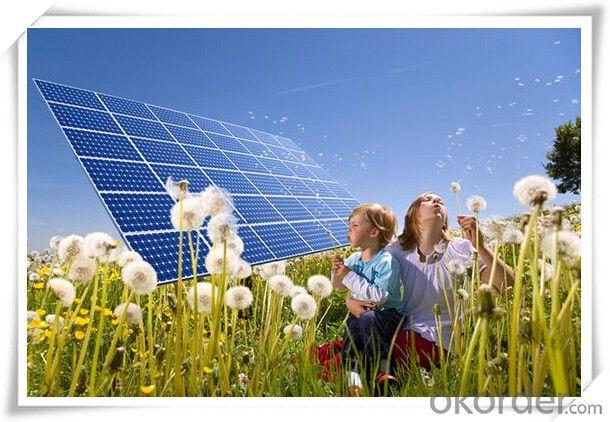 260W Mono and Poly 260-320W Solar Panel CE/IEC/TUV/UL Certificate Non-Anti-Dumping Solar Cells