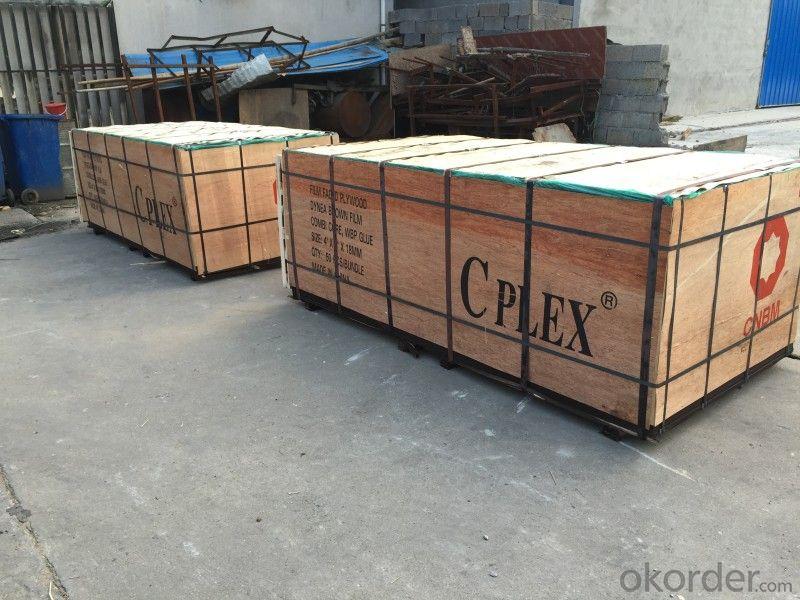 CPLEX, 21X610X2440mm, Álamo, Madera contrachapada filmada, marrón