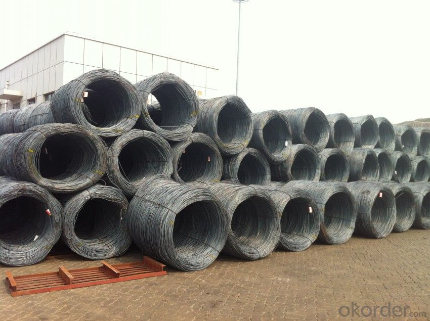 Hot Rolled Steel Wire rods in Grade SAE1008B