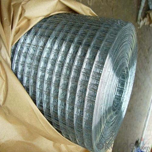 Galvanized Hexagonal Wire Netting-3/4 Inch for Chicken and Farm