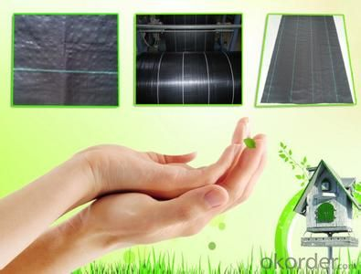 PP Garden Ground Cover Anti Weed Mat ,China Cheap Agriculture Weed Control Mat