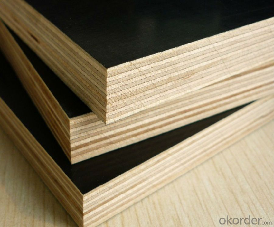 Black Film Faced Plywood  Shuttering Plywood Construction Plywood 18mm