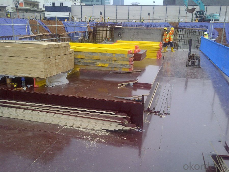 Timer Beam FORMWORK SYSTEMS in Catalogue