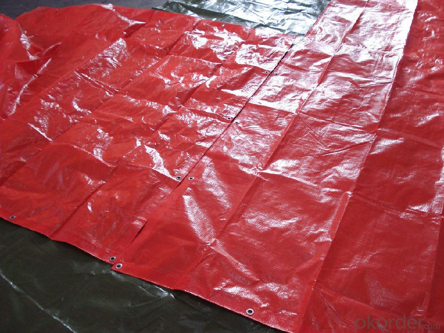 Waterproof PE Tarpaulin 70-200G Blue Color