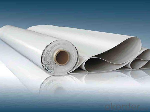 Thermoplastic Polyolefins Waterproofing Membrane