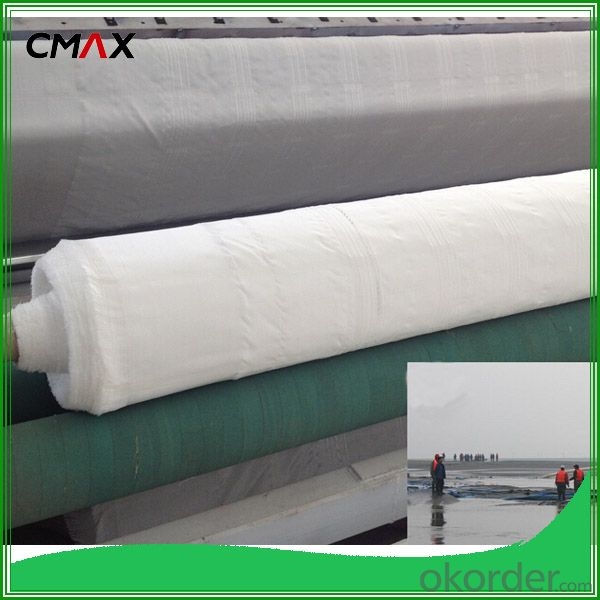 Filament Woven Geotextile in Dykes and Dams
