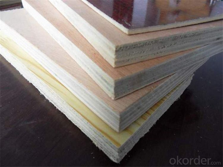 Film Faced Plywood for Construction with 10 Years' Experience