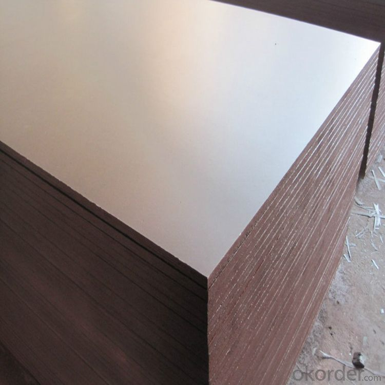 Film Faced Plywood for Concrete Formwork