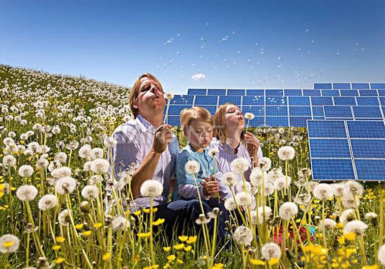 36V Monocrystalline Solar Panel 260W with 25 Years Warranty