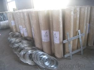 Welding Wire Fence Mesh  Electro Gavinized Wire Mesh