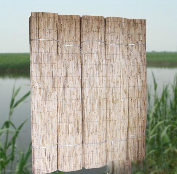 Garden Screen Natural Reed Garden Screen Natural