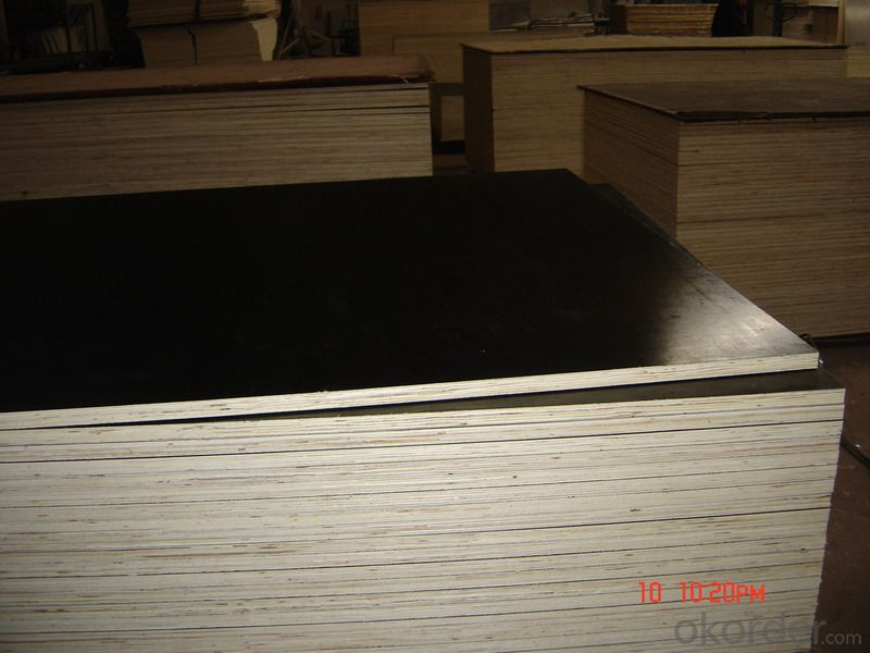 Finger Jointed Core Brown Film Faced Plywood