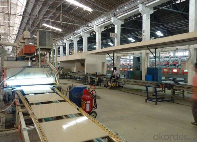 Polished Porcelain Tile Double Loading Rulip Serie CMAX-36602