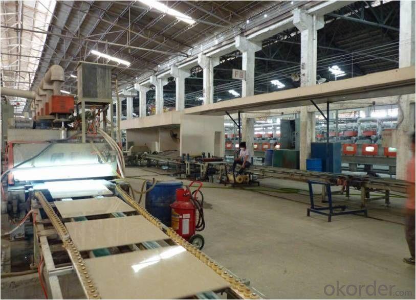 Polished Porcelain Tile Double Loading Rulip Serie CMAX-36603