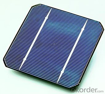 156x156mm 3BB Mono Solar Cells 6x6 with Sperior Quality