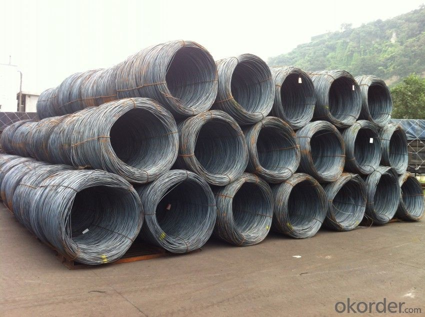 Hot Rolled Steel Wire Rods SAE 1008 with Good Quality