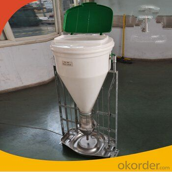 Pig Equipment Automatic Pig Dry/Wet Feeder-1