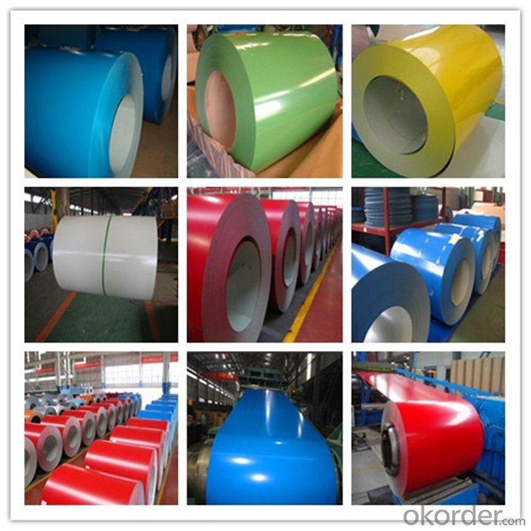 Ppgl Color Coated Galvanized Steel Sheet in Coils